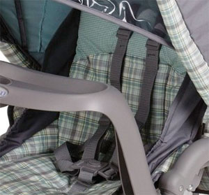 The DuoGlider Seat With 5-Point Harness